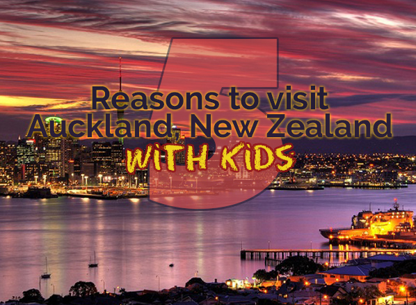 5 Reasons to Visit Auckland and North Island, New Zealand With Kids